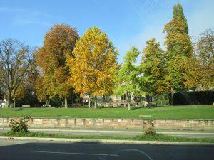 Colombipark in Freiburg (Sicht vom Hotel Colombi)