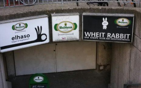 wheit Rabbit - White Rabbit Freiburg