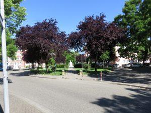 tennenbacher-platz-freiburg-klein