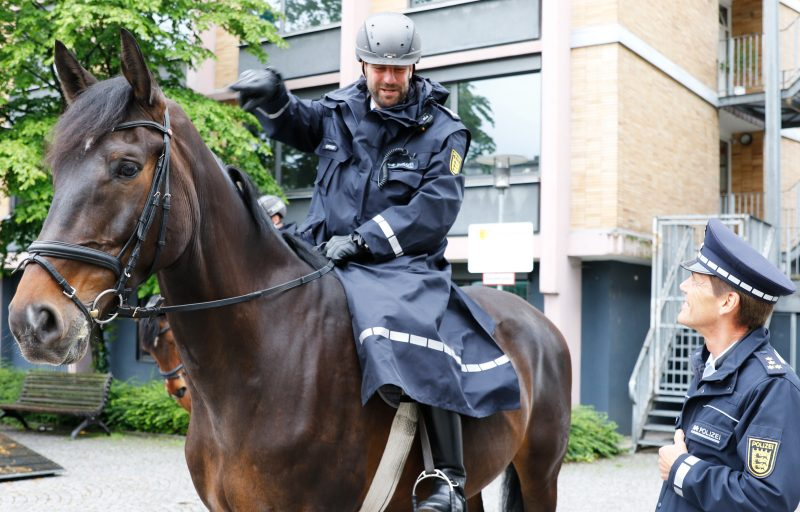 reiterstaffel-freiburg-polizei-pferd