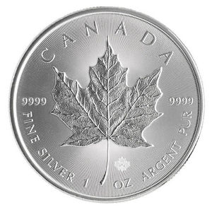 Maple Leaf in Silber