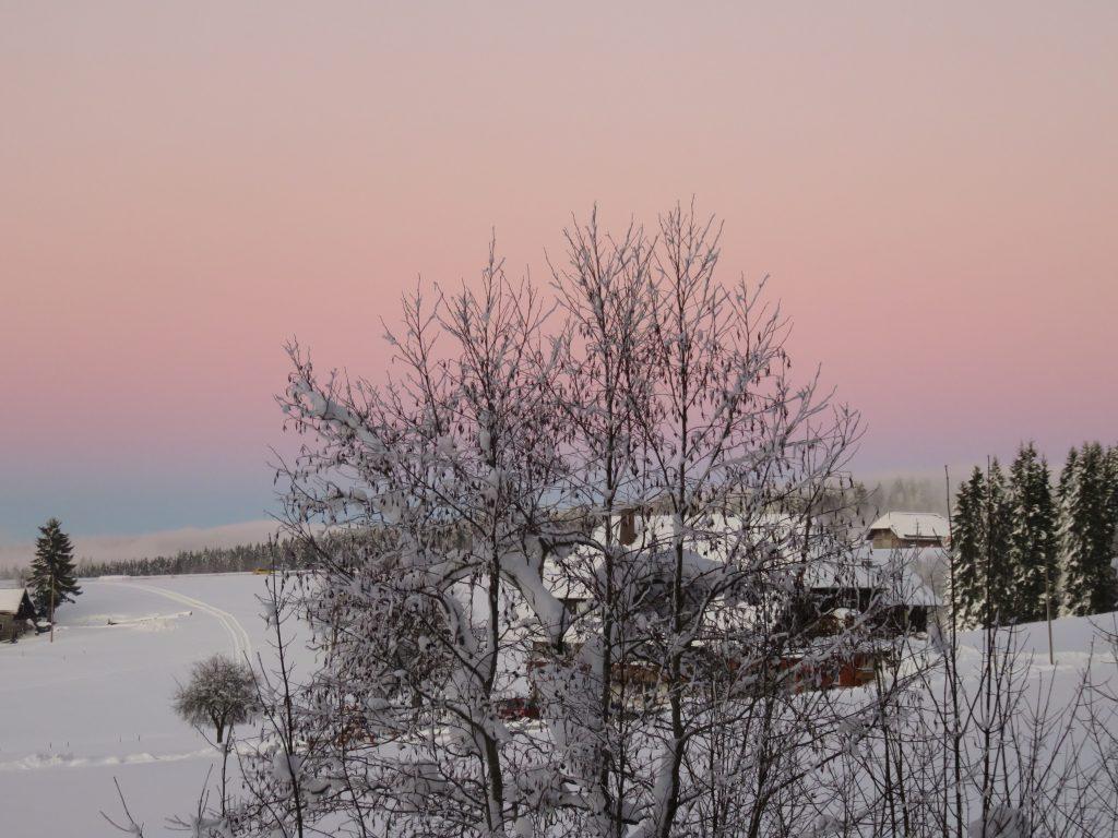 schwarzwald-winterlandschaft-schnee