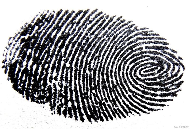 fingerabdruck-freiburg-pixabay