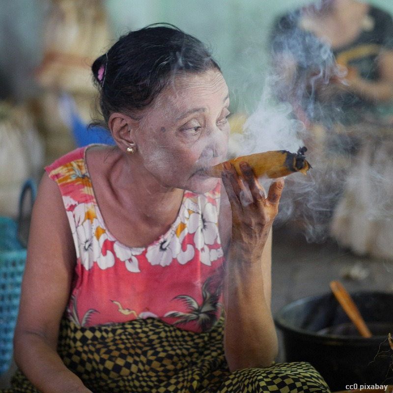 raucherin-zigarre-oesterreich-wien-rauchverbot-restaurant-pixabay