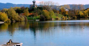 Seepark-flueckinger-see-freiburg-pixabay