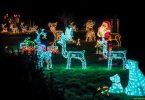 weihnachts-beleuchtung-