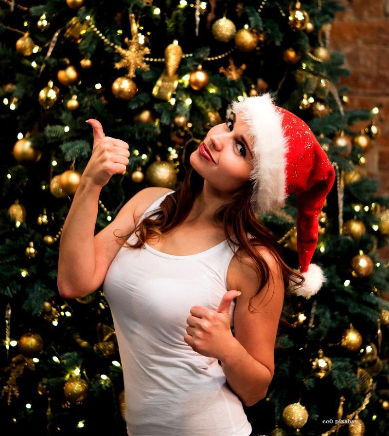 Weihnachtsbaum-abholung-freiburg-pixabay