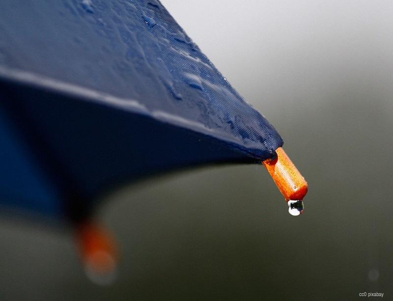 Regenschirm Freiburg