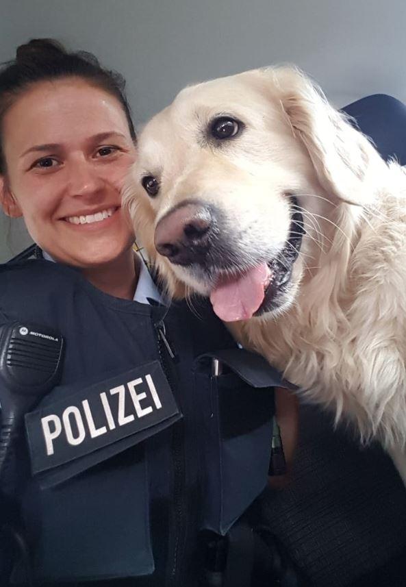 hund-karlson-bundespolizei-offenburg