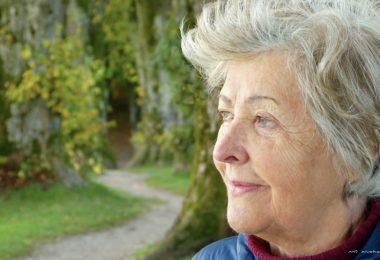 Alzheimer Demenz Senioren