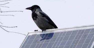 solaranlage-badenova