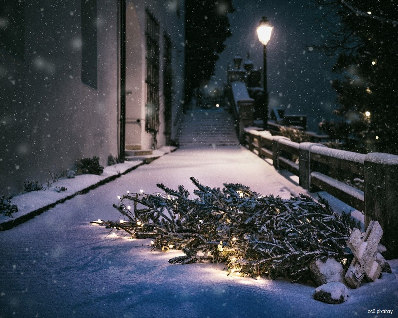 weihnachtsbaum-umgefallen-emmendingen