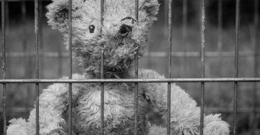 teddy-gitter-gefängnis