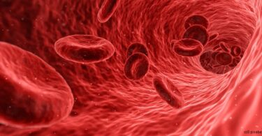 Blut-ader-thrombose