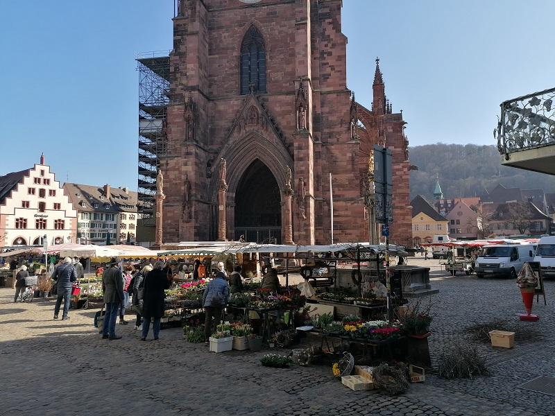 münstermarkt-freiburg